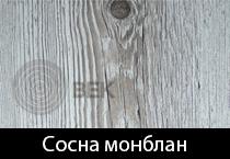 sosna-monblan-s
