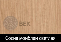 sosna_svetlaya_2_s